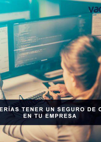 seguro-ciberriesgo
